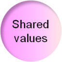 Social business model canvas: the shared values