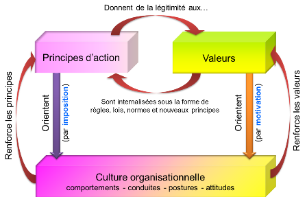 Social Business Models: Valeurs, principes d'action et culture organisationnelle