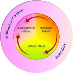 Social Business Models: Shared values canvas